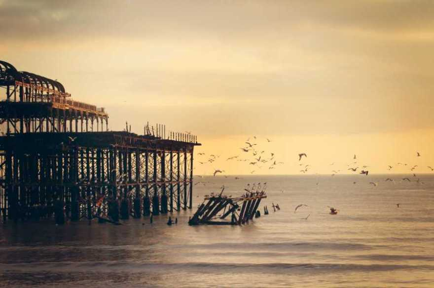 flock of birds flying from a disused pier over water in low sunlight