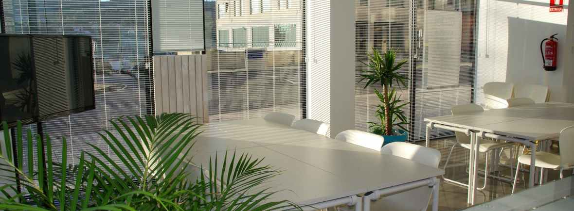 bright training room with sunlight streaming through blinds, desks, chairs and plant and view of offices beyond window outside